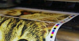 Cmyk 4 печати прокладчика акции видеоматериалы