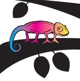 CMYK变色蜥蜴 库存图片