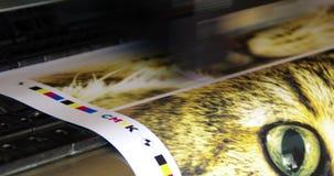 Cmyk de la impresión del trazador metrajes