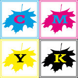 CMYK Maple Logo. The simple square logo in CMYK colors with the shape of maple leaf Royalty Free Stock Photography