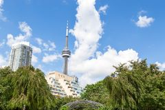 ТОРОНТО, ДАЛЬШЕ, КАНАДА - 9-ОЕ ИЮЛЯ 2016: Верхняя часть башни CN и окружающих жилых домов в городском Торонто стоковое фото rf