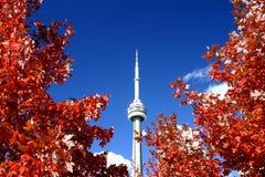 CN Toren en de Kleuren van de Daling Stock Afbeeldingen