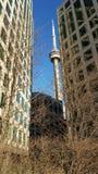 CN Toren in midden van Toronto Van de binnenstad Royalty-vrije Stock Foto's
