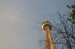 CN tower detail at sunset Stock Photo