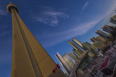 Cn tower and highrise building Royalty Free Stock Photography