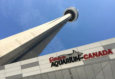 CN tower with ripley`s aquarium Royalty Free Stock Image