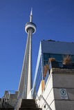 CN Tower with Office Buildings Stock Photography