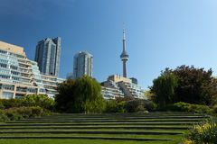 CN Tower seen from the Music Garden. Stock Photography