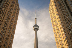 CN Tower and Skycrapers Stock Photography