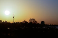 Cn tower and sun Stock Photography