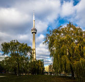 CN Tower between the vegetation of the Harbourfront - Toronto, Ontario, Canada. CN Tower between the vegetation of the Harbourfront in Toronto, Ontario, Canada Stock Photos