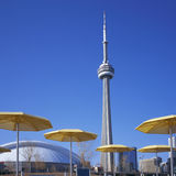CN Tower & Yellow Umbrellas. At Toronto Harbourfront royalty free stock image