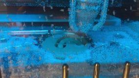 CNC CAD CAM de machine van het polymeermalen voor tandprosthetics stock videobeelden
