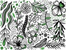 Собрание цветков и заводов руки вычерченных ручных Monochrome иллюстрации вектора в стиле эскиза Фантазия Stylization иллюстрация штока