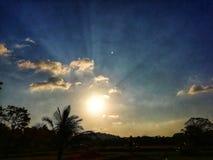 Солнечный свет вечера стоковые изображения
