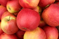 Сочные, душистые яблоки, который нужно использовать для пирога стоковая фотография rf