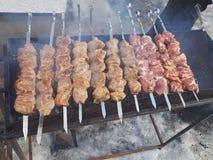 Сочное marinated в kebab мяса специй на протыкальниках, сваренное и зажаренное на гриле барбекю огня и угля, в природе снежного стоковое изображение rf