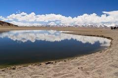 co湖nam西藏 免版税库存照片
