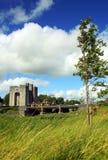 Co. Clare Ierland van het Kasteel van Bunratty Royalty-vrije Stock Afbeeldingen