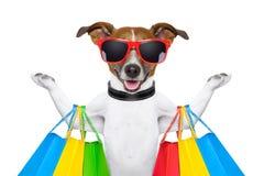 cão da compra Imagens de Stock