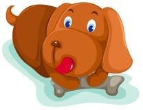 Cão de filhote de cachorro Imagens de Stock Royalty Free