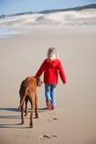 Cão de passeio da menina Imagens de Stock