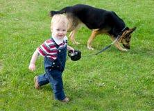 Cão de passeio do menino Fotografia de Stock