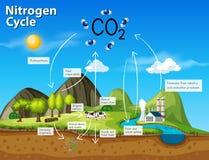 CO2 del ciclo dell'azoto di scienza illustrazione vettoriale