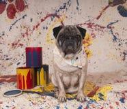 Cão do artista Foto de Stock