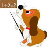 Cão e matemática Imagem de Stock Royalty Free