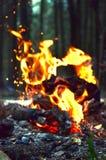 Co jak patrzeje ogień? Fotografia Royalty Free