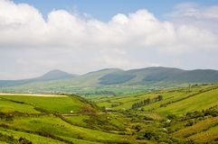 Co.Kerry Landscape. Green fields and animals grazing in kerry landscape Stock Photos