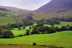 Co.Kerry Landschaft Lizenzfreies Stockbild