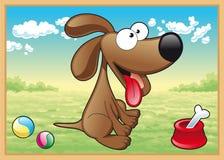 Cão no prado Fotos de Stock
