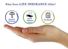 Co Oferuje ubezpieczenie na życie? Obraz Stock