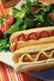 Cão quente e salada Imagens de Stock Royalty Free