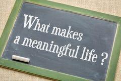Co robi znacząco życiu? fotografia royalty free