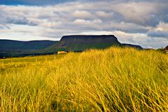 Co.Sligo. Evening sun lights foreground wild grass and Benbulben mountain seen from Streedagh Strand in Co.Sligo, Ireland Royalty Free Stock Photography