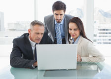 Co workers all looking at a laptop Royalty Free Stock Image