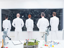 Co-workers laboratory analysis Royalty Free Stock Images