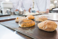 Co-workers making bagels and bread together Stock Image