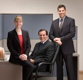 Co-workers posing in cubicle. Confident co-workers posing in cubicle Stock Image