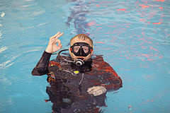 Coach diving in water Stock Photography