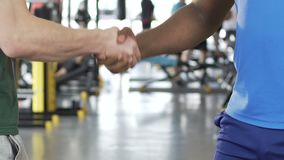 Coach firmly shaking hands to his partner after successful training session. Stock footage stock footage