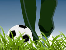 Coach and football. Between grass, exercises time Stock Photo