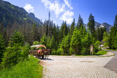A coach with horses in Tatra National Park Royalty Free Stock Image