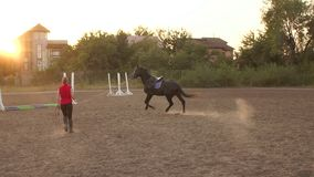 Coach teaches the horse to run at the racetrack. Coach teaches the horse to run with a whip and a long rope in the arena at the racetrack. Slow motion. Training stock footage