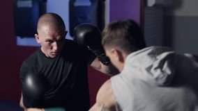 Coach trains boxer in gym, work out kick and defense, slow motion. stock video footage