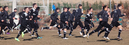 Coaching the football team of PAOK Stock Photography