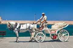 Coachman with a beautiful white horse on the main quay of Chania town. Crete, Greece Stock Images